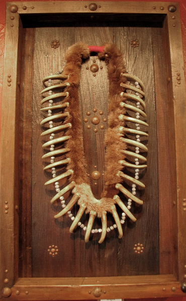 Imitation Bear Claw Necklace in Shadow Box