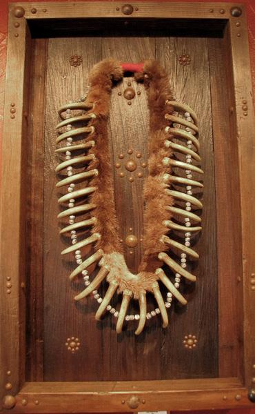 Imitation Bear Claw Necklace in Shadow Box